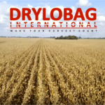 grylobag-movie